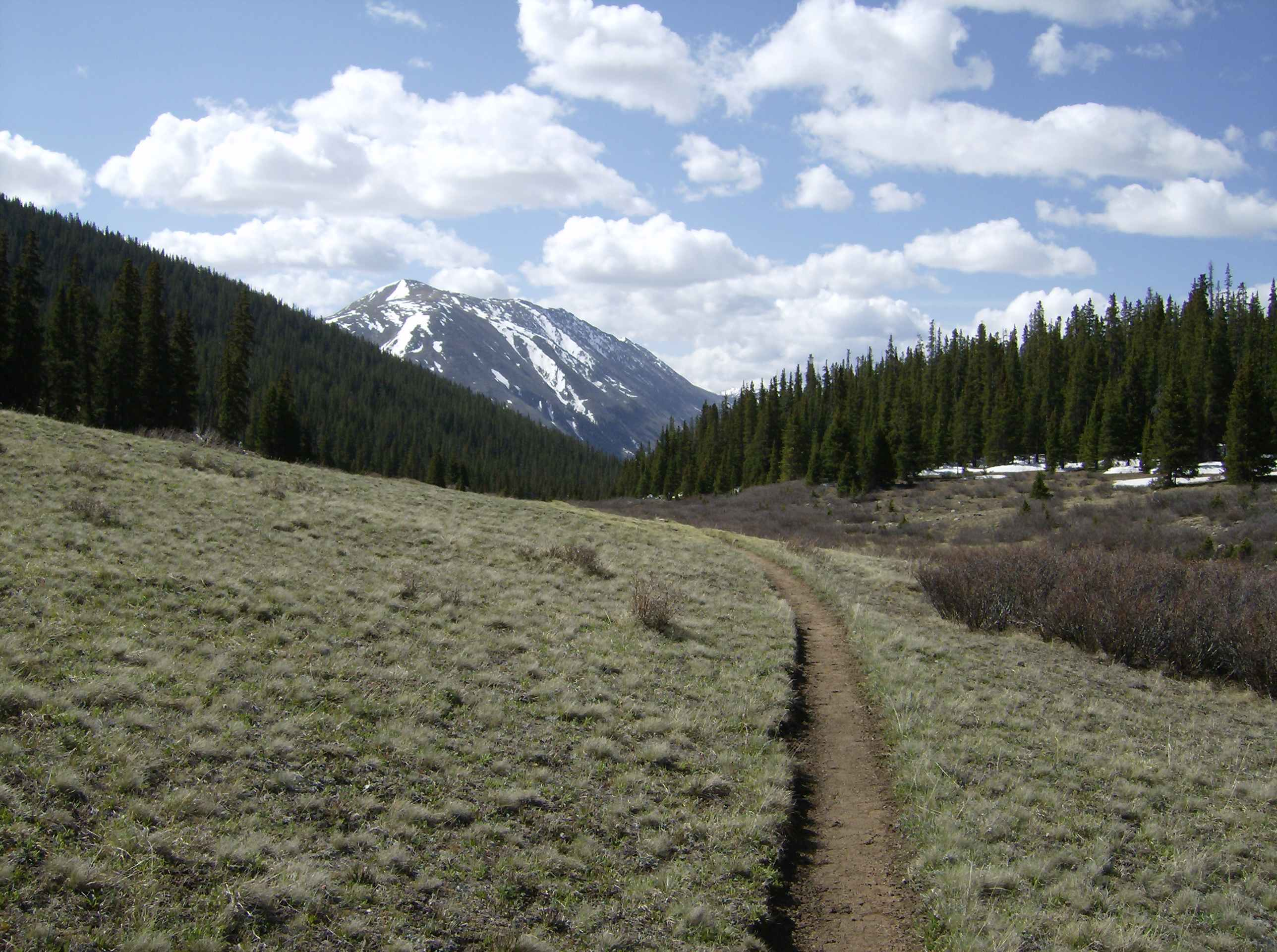 A picture of a Colorado Trail